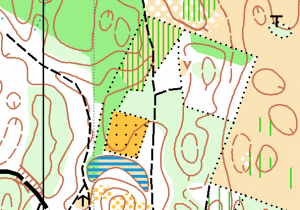 Example_distinct_vegetation_boundary_orienteering